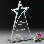 Meteor Star Achievement Awards
